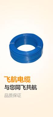 飞航 WDZ-BYJ4 蓝色 单芯布电线